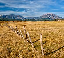 COLORADO RANCH by Joe Saladino