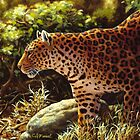On the Prowl - Leopard Oil Painting by csforest