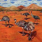 Emus by shallay