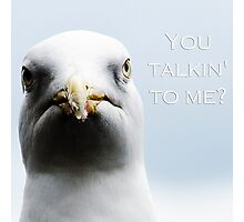 Angry Gull Photographic Print