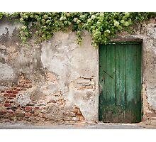 Krems: The Green Door Photographic Print