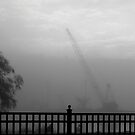 Crane in Fog by katpix