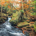 Above Mohawk Falls October 2012 by Aaron Campbell