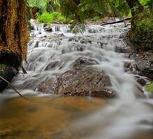 Badham falls by Simon Penrose