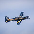 Air Show Flyby by Drew Robinson