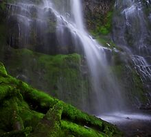 Enchanted Falls by Marcus Angeline