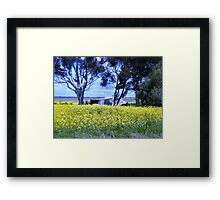 Old shed - along a country road in Balliang, Vic. Framed Print