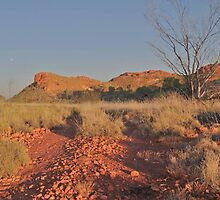 Outback Highway by Thomas Sherrell