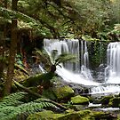 Horseshoe Falls in the Mt Field NP in Tasmania by Alwyn Simple