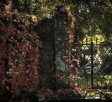The Forgotten Gateway by Michael Carter