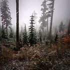 Snow On Buck Mt. by Charles & Patricia   Harkins ~ Picture Oregon