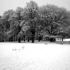 Snow on Hampstead Heath  by copacic