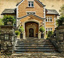 Grand Entrance by Yannik Hay