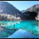 Jiuzhaigou national park in China by jonshock