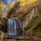 Late October at Looking Glass Falls by James Hoffman