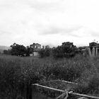 Desolate Fields by jimmyzoo