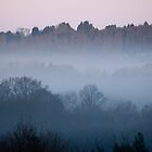 Dawn Mist by Sue Robinson