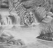 Water Cat - Bengal Tiger by Heather Ward