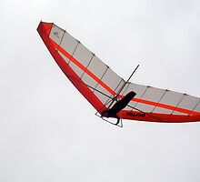 Hang Glider 11 - 14 10 12 by Robert Phillips