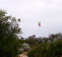 Hang Glider 4  - 14 10 12 by Robert Phillips
