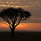 sunrise on the masai mara by nicolemarie72