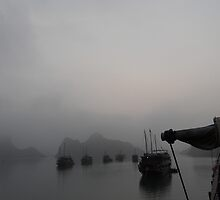 Halong Bay, Vietnam by gertiw