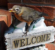 Strange  Afternoon With A Robin by WildestArt