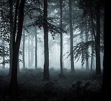 The Fog by Ian Hufton
