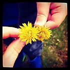 Little Dandelions by kriss53