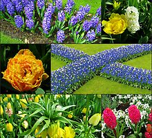 Keukenhof 'Blue Cross' Collage by kathrynsgallery