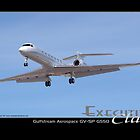Executive Class Gulfstream G550 by Trenton Hill