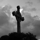 Cross by ANDREW ROMER