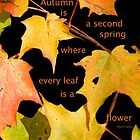 Autumn is.... by Heather Crough