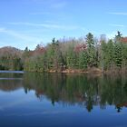 Very Pretty & Glassy Mountain Lake  by dww25921