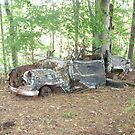 Retro Rustic Classic Car Withering Away by dww25921