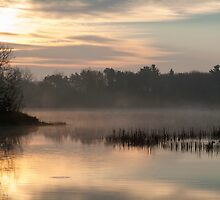 Ducks at Dawn by KBritt