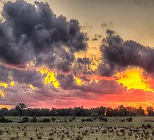 Sunset Rhapsody - Junee, NSW Australia - The HDR Experience by Philip Johnson