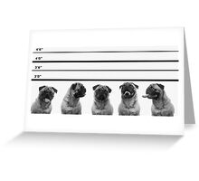Police Line Up Greeting Card