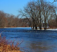 Moira River Early Spring by Jason  King