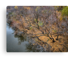 After the Leaves Fall Canvas Print