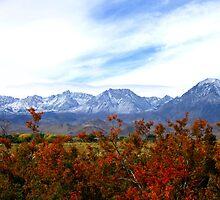 A Cool Sierra Fall by marilyn diaz