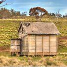 Holt's Flat Siding NEW SOUTH WALES AUSTRALIA  by Kym Bradley