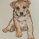 Puppy Red. by Norah Jones