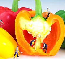 Mining in colorful peppers by Paul Ge
