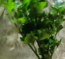 bouquet a la celery . . . .  by evon ski