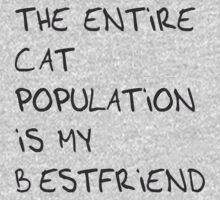 The Entire Cat Population is My Bestfriend by Inspire Store