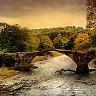 Cromwells Bridge by Irene  Burdell