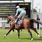 Frankel wins again............ by lulu kyriacou