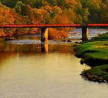 Autumn Day along the River Tees: Barforth Bridge, Gainford by Ian Alex Blease