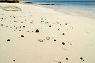 Sea Glass on the beach in Nassau, The Bahamas by 242Digital